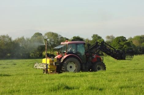 Spraying the preparation-500