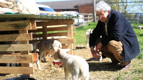 Farmer Adrian looking after Rush Farm's lambs